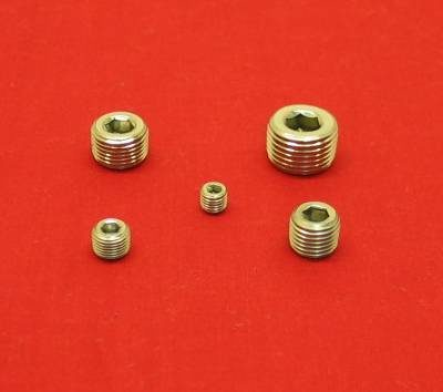 1/4 Stainless Hex Socket Tapered Pipe Plug